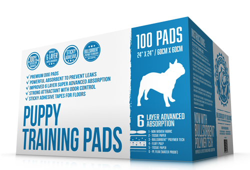 Best Puppy Training Pads 6 Layers