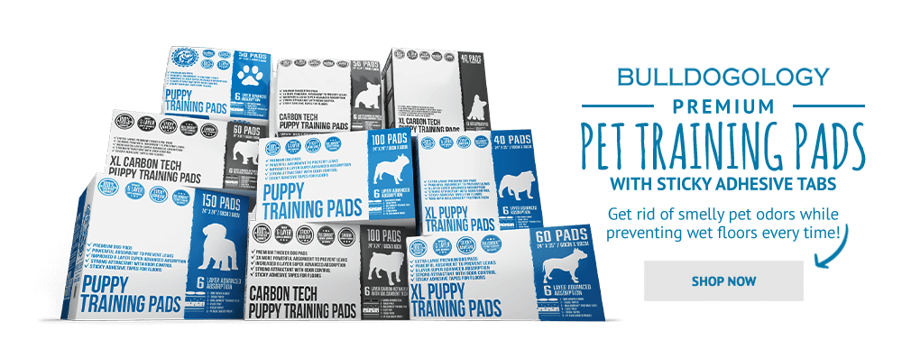 Try Bulldogology Premium Pet Training Pads Today!
