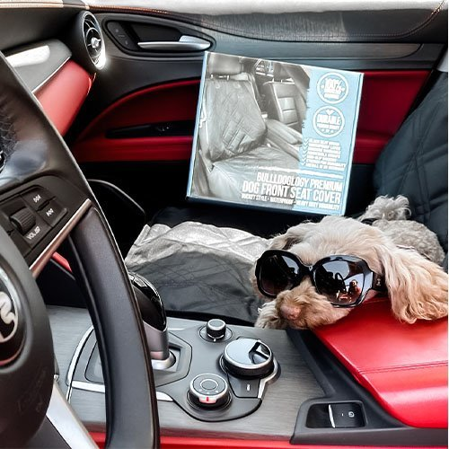 covers customer images 0001 6BBB8055 40BC 441A A848 60C0DFC2050C Dog Car Seat Cover with Hammock