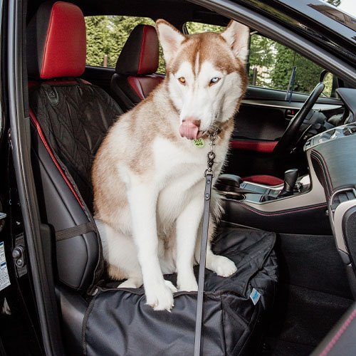 covers customer images 0012 20200703 AFM 5809 Dog Car Seat Cover with Hammock