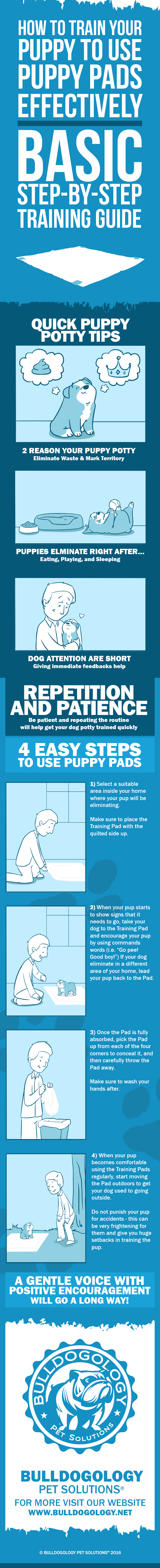 How to use puppy pads in 4 easy steps