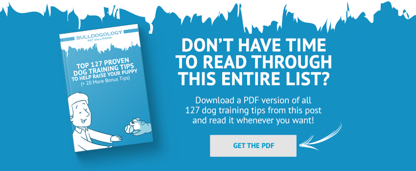 127 Dog Training Tips PDF