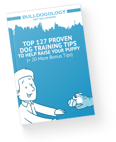 Top 127 Proven Dog Training Tips to Help Raise Your Puppy By