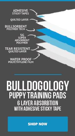 Shop Premium Puppy Pads