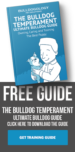 Download The Bulldog Temperament