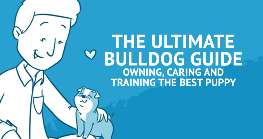 The Ultimate Bulldog Guide for Owning, Caring, and Training The Best Puppy