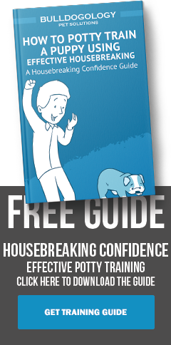 Housebreaking Guide