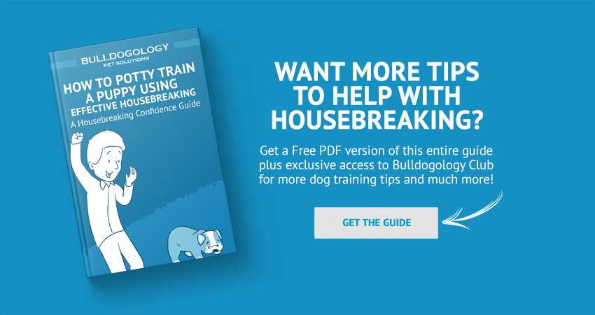 housebreaking guide pdf How to Potty Train a Puppy Using Effective Housebreaking