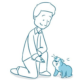 dog supplements Best Ways to Deal with Dog Anxiety - Top Calming Remedies
