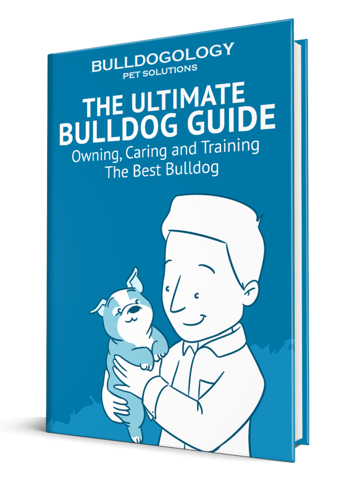 Download Bulldog Guide