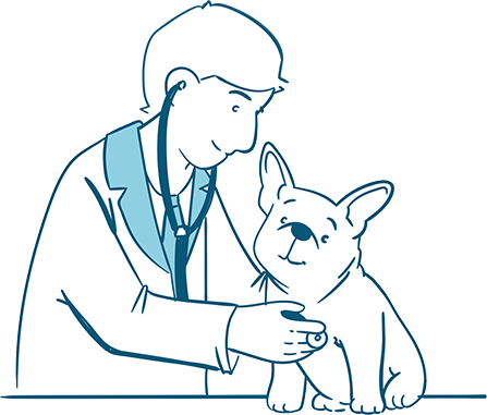 Visit a Vet Immediately if these Remedies Didn't Work