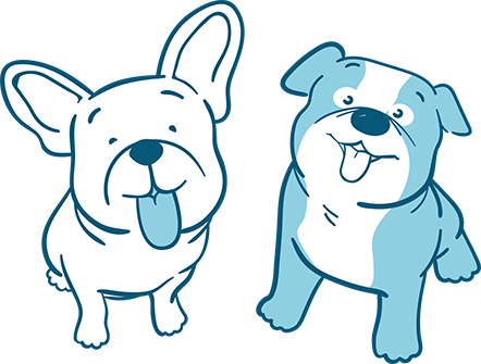 The-Difference-Between-an-English-and-a-French-Bulldog