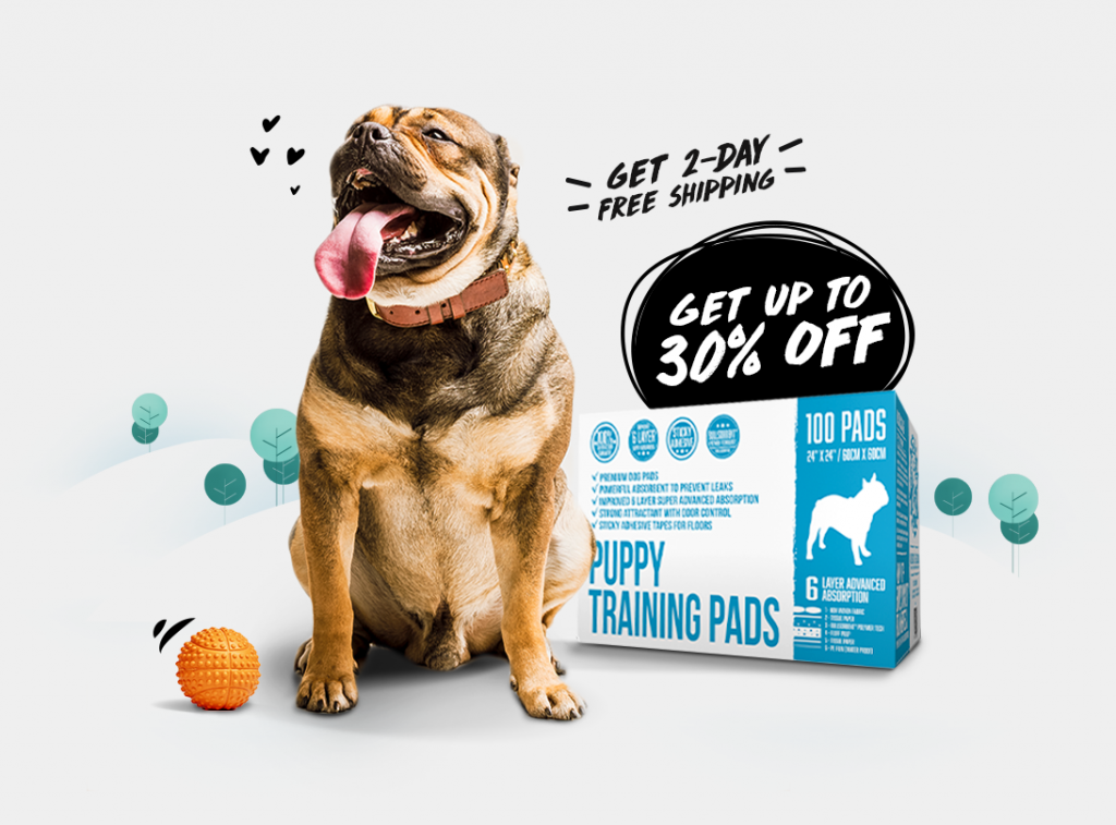 Train-Your-Dog-Month---Landing-Page-Main-Hero-Image