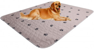 SincoPet Reusable Pee Pad + Free Puppy Grooming