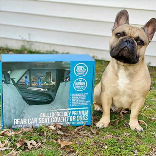 pp-customer-images_0009_bunker.the.frenchie-01